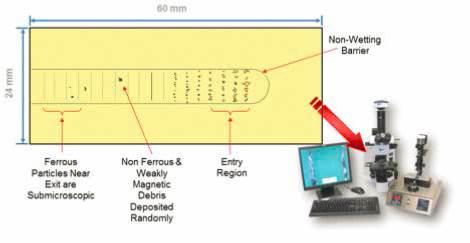 Ferrogram.jpg