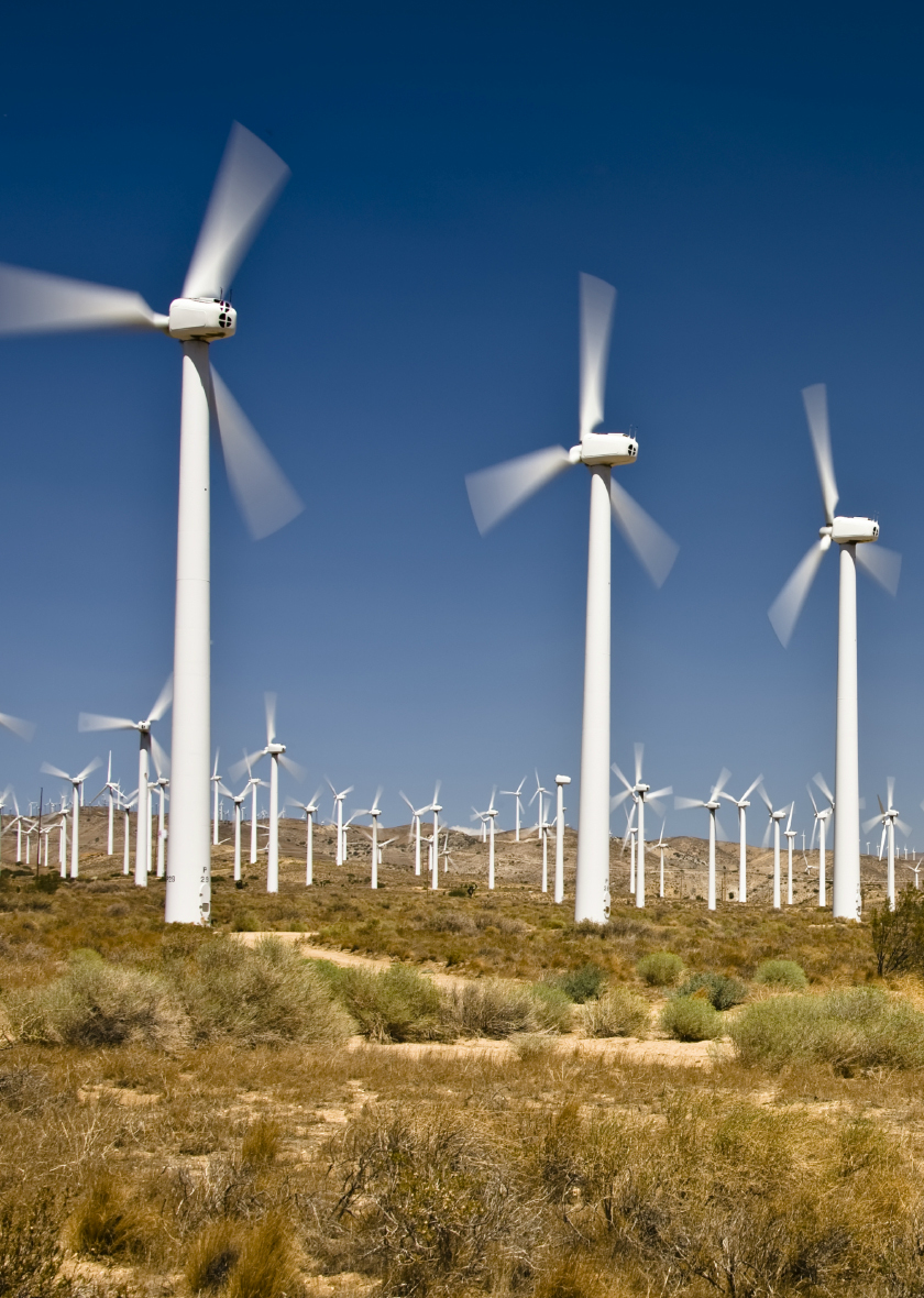 Windmill Farm Cropped.png